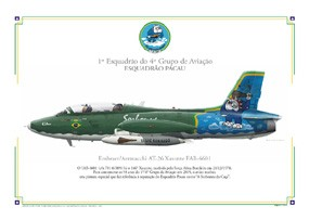Perfil Embraer AT-26 Xavante FAB-4601
